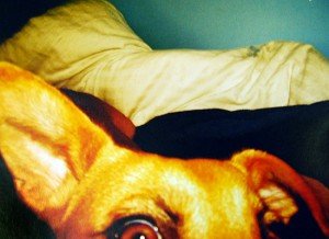This photograph, taken by Katherine Bascom '10, is one of 77 images featured in the new magazine Exposure, created by Wesleyan students.