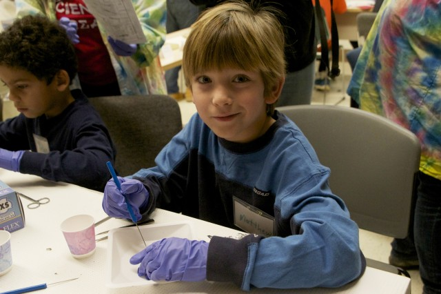 Young scientist Matthew works on dissecting an owl pellet during Science Saturday, hosted by Wesleyan's Science Outreach Class on Nov. 10. 
