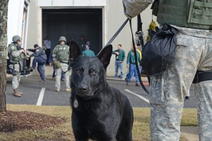 Middletown Police SWAT team and K-9 unit provided security during the drill.