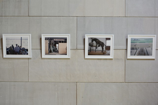 """Thesis Art 2014"" is on display through May 24 at the Ezra and Cecile Zilkha Gallery. The reception, honoring Class of 2014 studio art majors, will be held from 2 to 4 p.m. May 24. Pictured are Hannah May Knudsen's archival image prints selected from ""The Apron."" Her photographs capture horseracing culture in present-day United States."