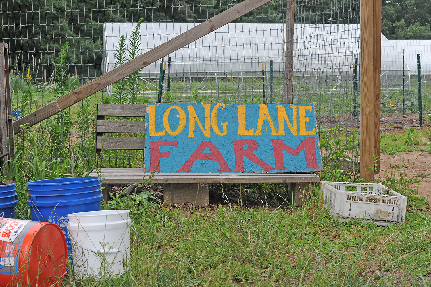 Wesleyan's Long Lane Farm, July 2014.   (Photo by Olivia Drake)