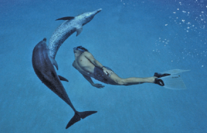 Dolphin Boy, directed by Dani Menkin and Yonatan Nir (2011) will be screened March 5.