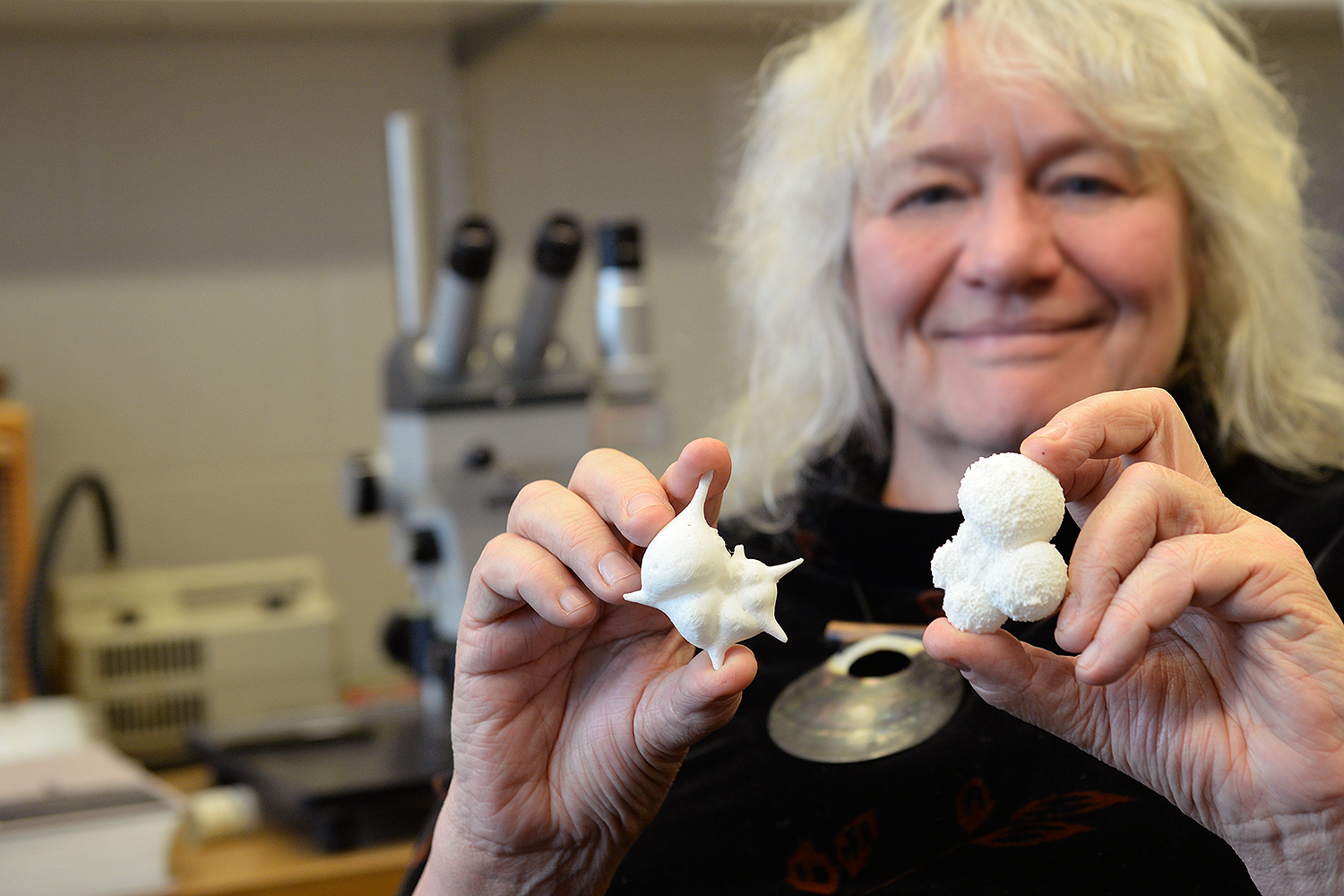 "Ellen Thomas, research professor of earth and environmental science, holds two samples of microfossils that were printed on a 3-D printer at the American Museum of Natural History. The printed fossil models are about 8,000 times bigger than the actual limestone fossils.  Ellen Thomas holds two planktonic forms which lived closer to the surface of the water. At left is Hantkenina alabamensis, which lived when the world was warm, and went extinct at the time of formation of the Antarctic ice cap about 33.7 million years ago. At right is Globigerinella siphonifera. It lives in the subtropics today, in open ocean. ""When it's alive, it has spines and protoplasm inside and along the spines,"" she said."