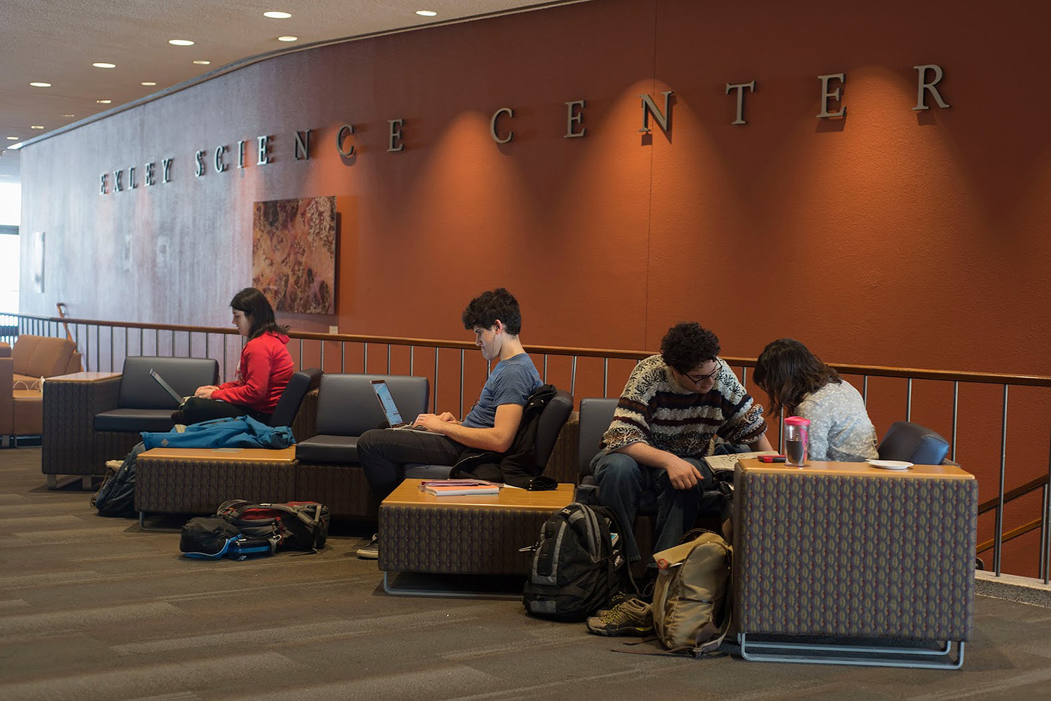 Exley Science Center's lobby boasts more than 50 new study spots.