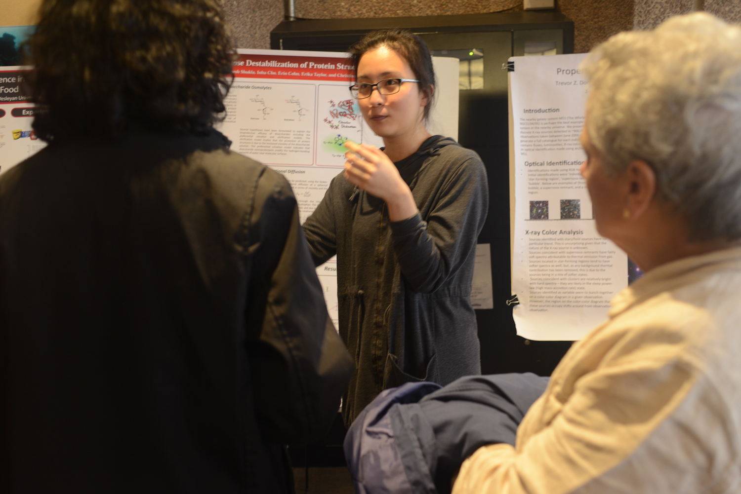 Inha Cho '15 investigated sucralose, an artificial sweetener, and its impact upon protein structure as part of her thesis work.
