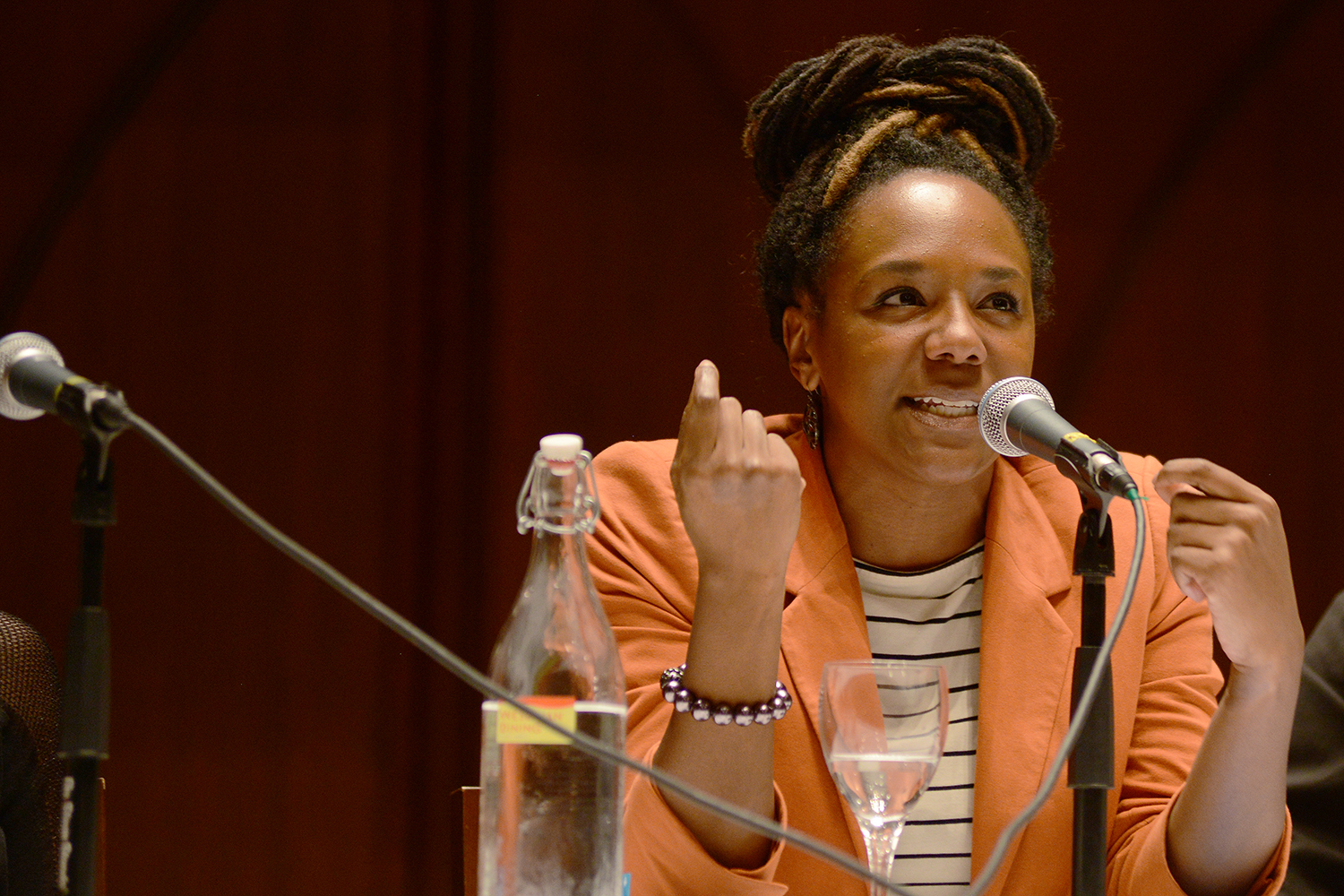 "Bree Newsome is a graduate of New York University's Tisch School of the Arts where she received a BFA in film and television. While still in high school, Newsome created an animated short, THE THREE PRINCES OF IDEA which earned her a $40,000 scholarship from the National Academy of Television Arts and Sciences. In August 2012, Newsome wrote and recorded a rap song, ""SHAKE IT LIKE AN ETCH-A-SKETCH!"", skewering presidential candidate Mitt Romney and criticizing the Republican Party for policies that promote classism and bigotry. A staunch advocate for human rights and social justice, Newsome was arrested last year during a sit-in at the North Carolina State Capitol where she spoke out against the state's recent attack on voting rights. She continues to work as an activist and youth organizer in North Carolina, serving in the capacity of Western Field Organizer for the youth-led organization Ignite NC."