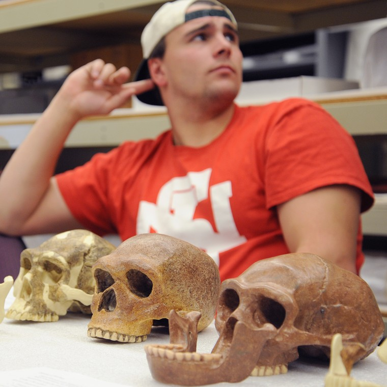 TJ Blackburn '16 listens to a classroom discussion while examining skulls from three different time periods.