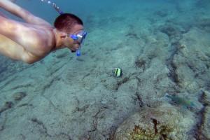 Robert Ramos '16 observes tropical fish and corals while snorkeling in Kahaluu Beach.