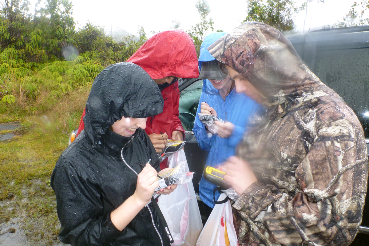 A group studying the rapid death of the Ohi'a lehua tree prepares their GPS units in the rain.
