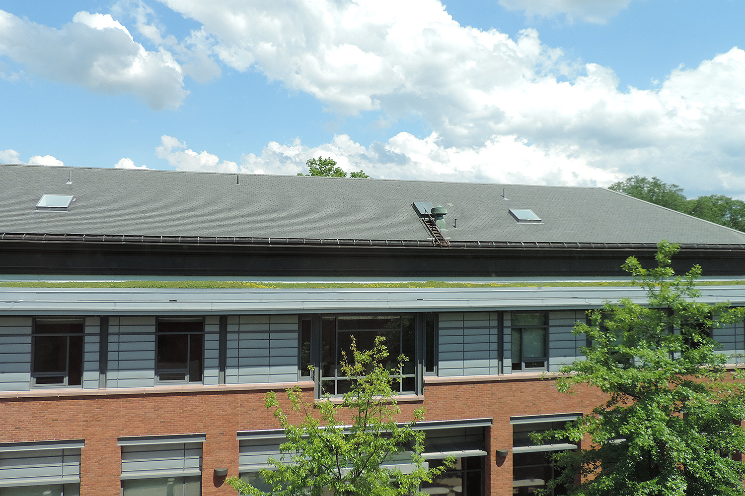 "As part of Wesleyan's sustainability efforts, a 2,500 square foot ""green roof"" was planted on the top of Boger Hall."