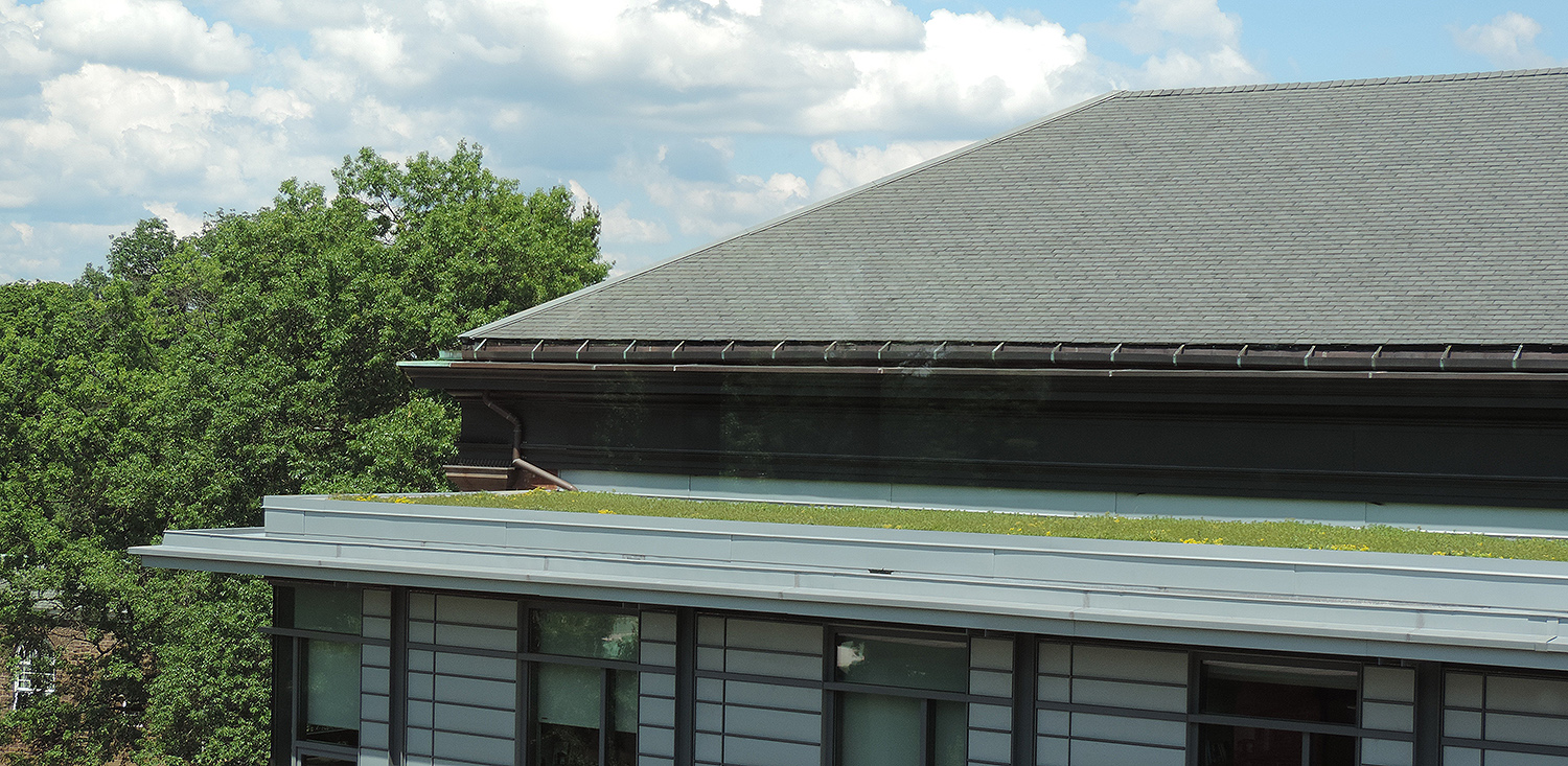 The green roof provides water filtration and a reduction of heat.