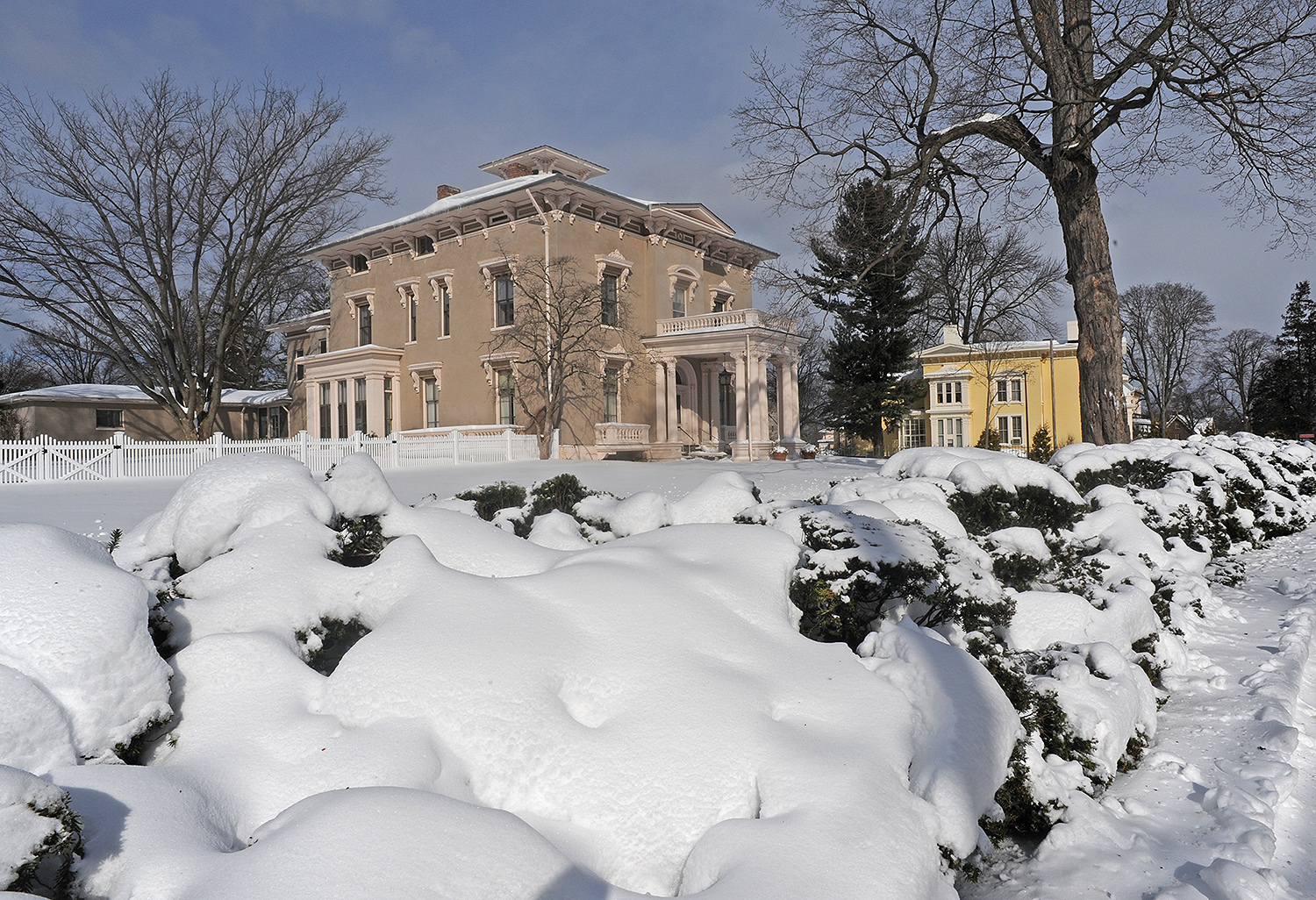 Snowy shrubs frame the President's House and the Anthropology Department.