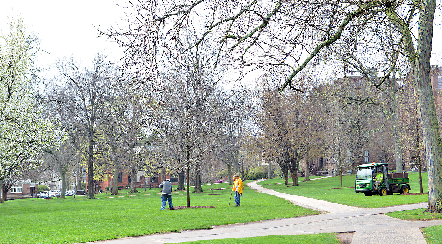 This spring, crews are planting new trees at multiple locations on campus.