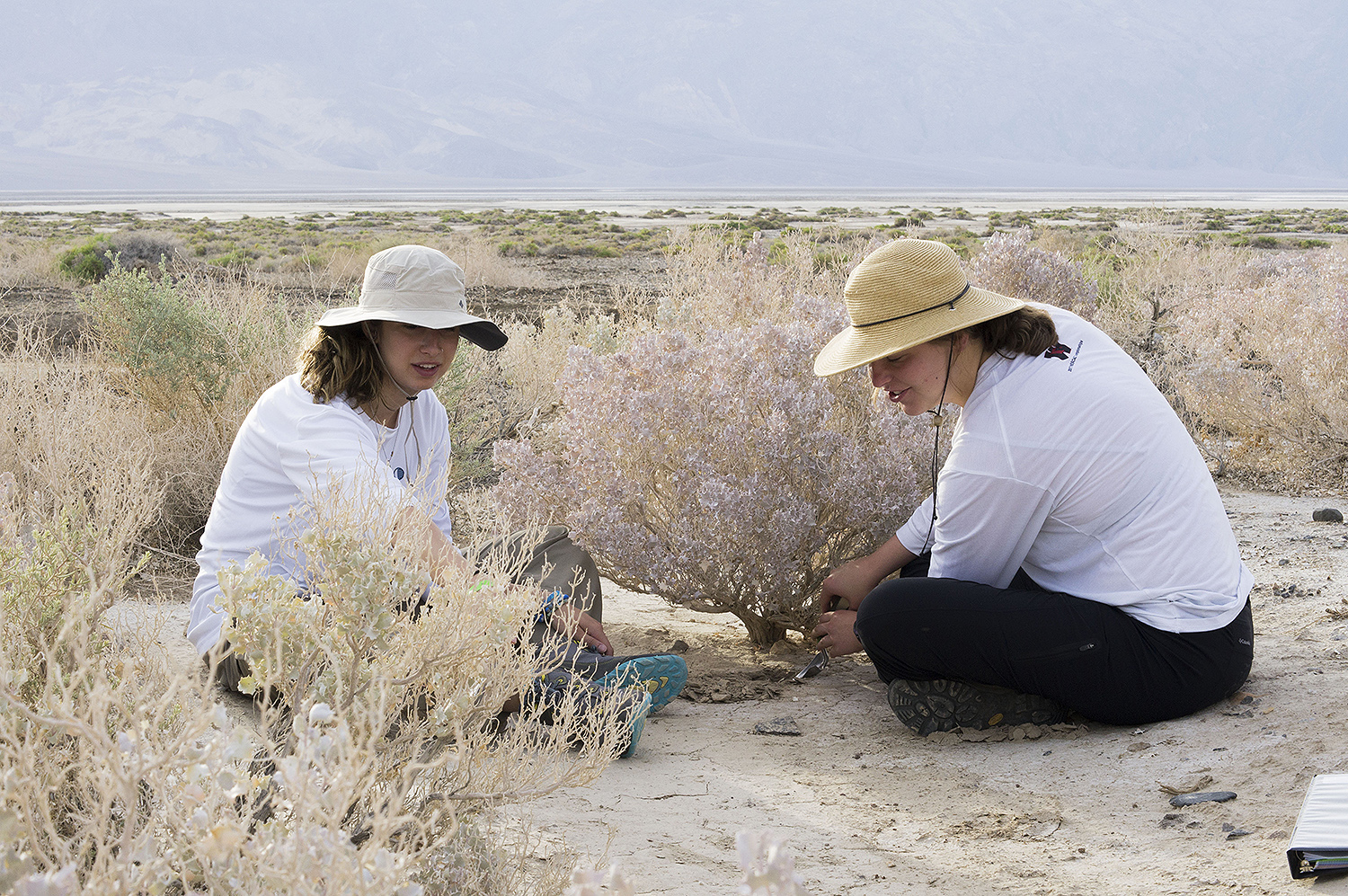 Nicole DelGaudio '18 and Bella Wiener '19 sample the rhizospheres of desert holly at about 200 feet below sea level. The salt pan of Death Valley is in the distance.