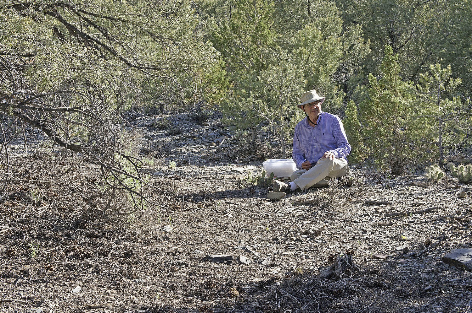 Fred Cohan samples the rhizospheres of Opuntia, or prickly pear cactus, at about 7,000 feet.