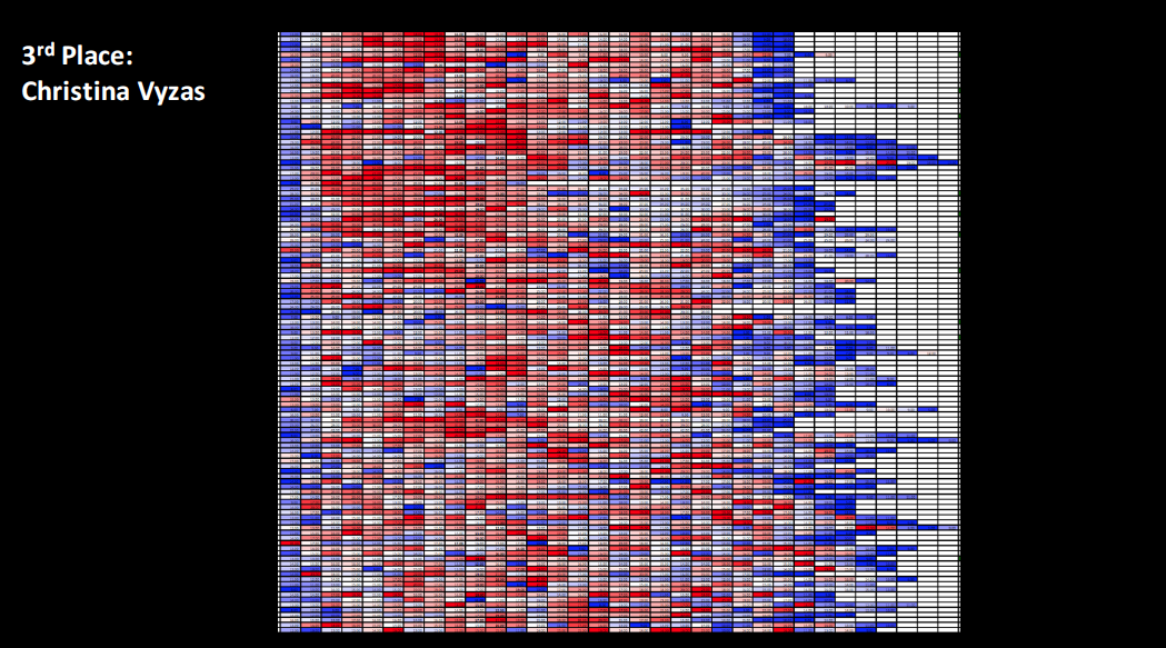 Christina Vyzas '18 took third place with this image of a portion of a chart conditionally formatted for zebrafish centra size range. The scale from blue to red indicates the variation from smallest to largest centra down the length of the vertebral column in the posterior direction.