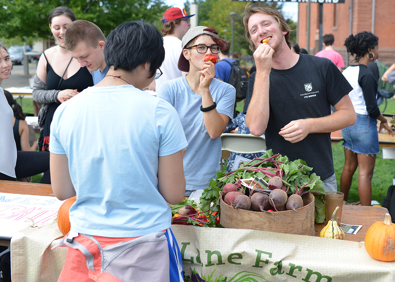 Long Lane Farm is Wesleyan's student-run organic farm, located at 281 Long Lane. Throughout the year, students grow and sell a variety of vegetables, fruits, herbs, and products. They host community events and programs such as PumpkinFest and the Middletown Food Project.