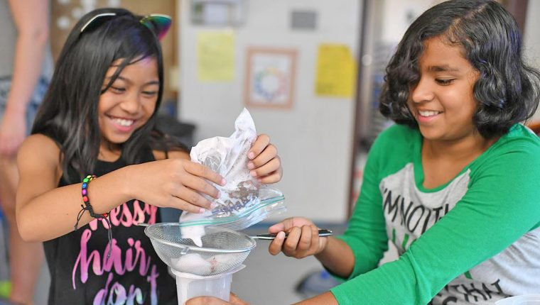 Girls in Science Camp participants Danica, 9, and Raima, 11, work on extracting DNA from a strawberry.