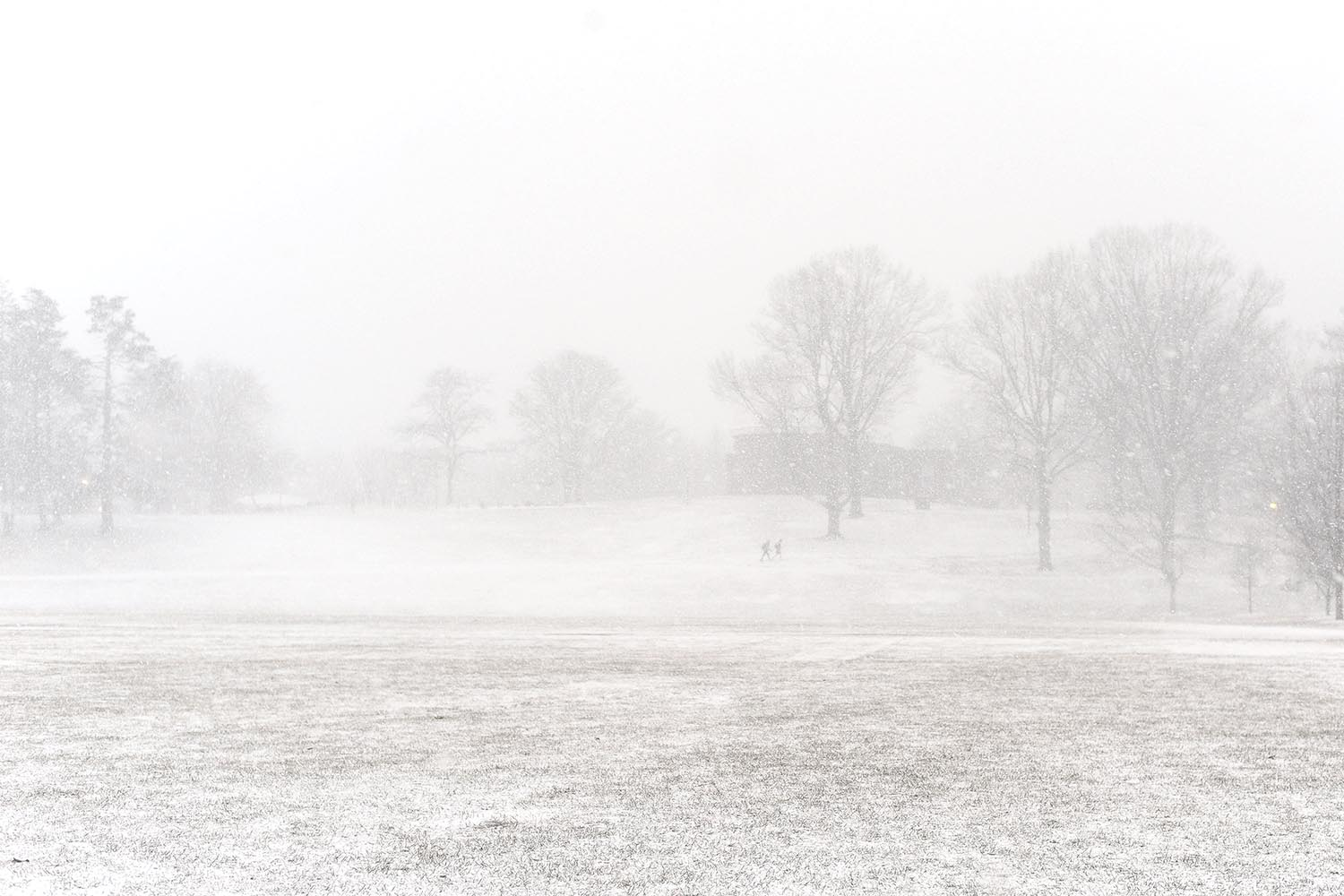 A snow squall stormed through Connecticut On Jan. 30, forming nearly white-out conditions on Wesleyan's campus. Temps plummeted from 30 degrees at 4 p.m. to 5 degrees at midnight.