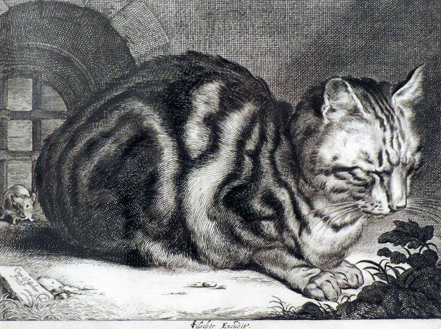 Cornelis de Visscher, aka Cornelis Visscher the Younger (Dutch, ca. 1629–1658). Cat Asleep, 17th century.