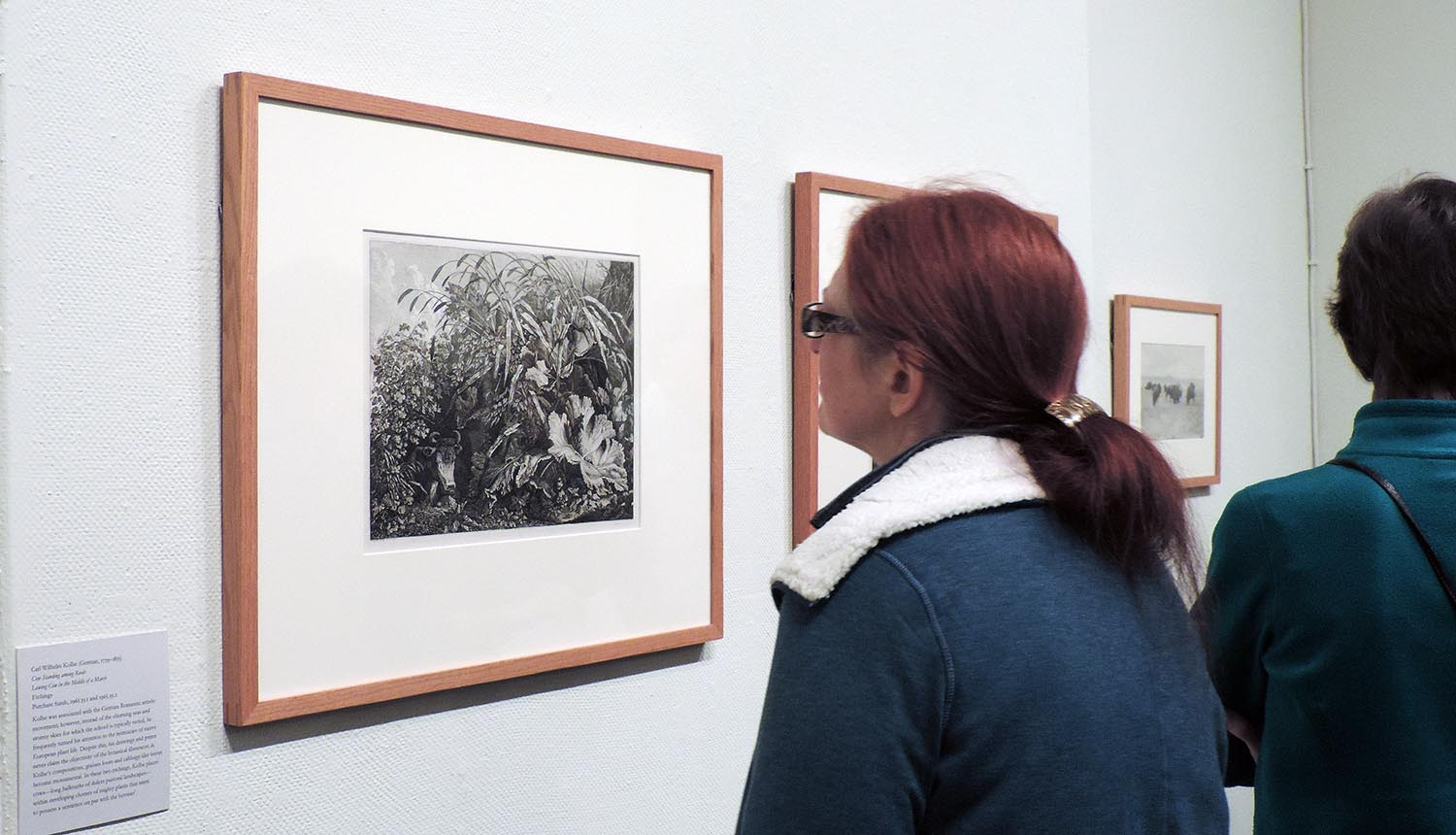 The exhibit encourages visitors to consider the various ways in which humans see and interpret animals, who are not able to represent themselves through art.