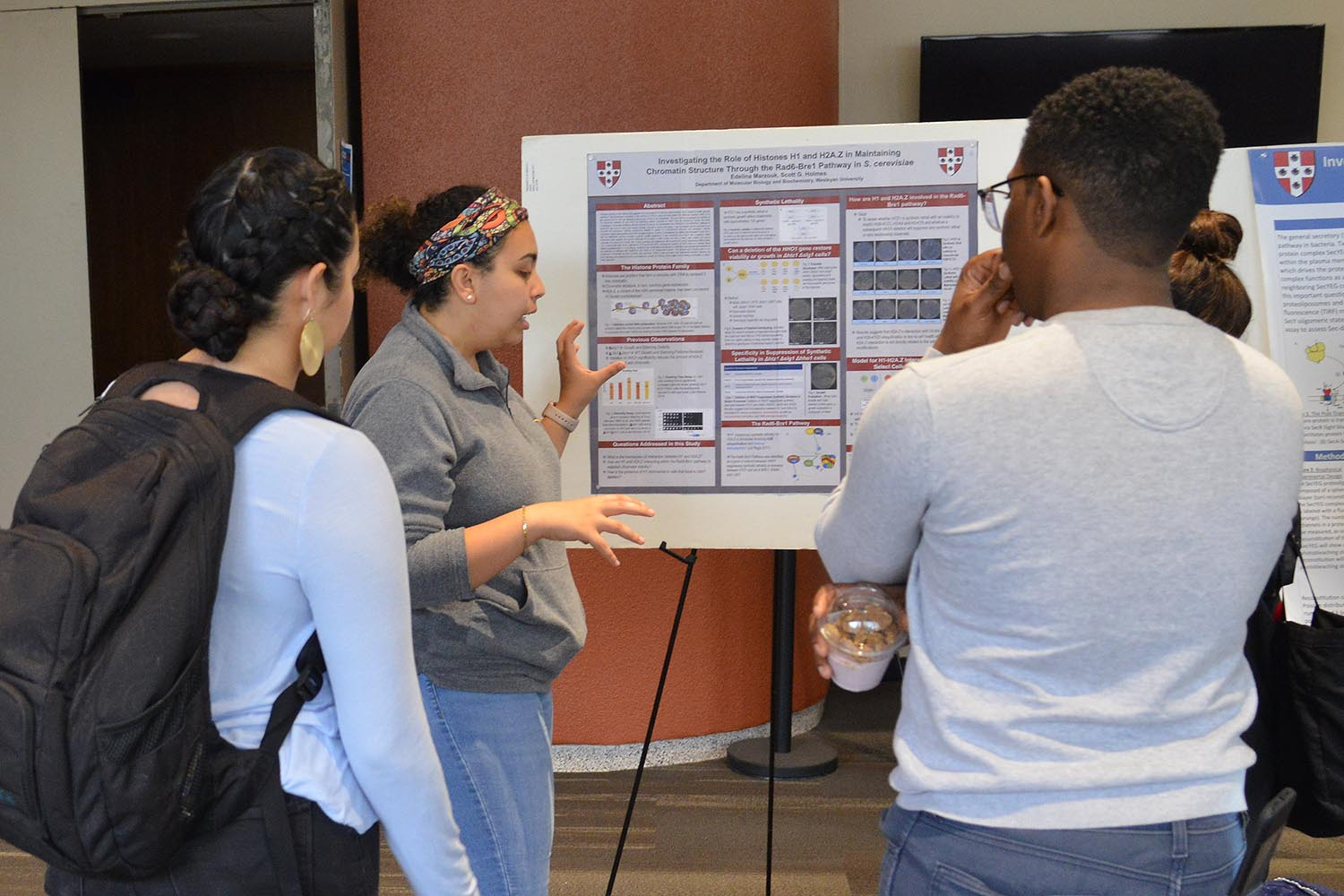 "Edelina Marzouk presented her study titled ""Investigating the Role of Histones H1 and H2A.Z in Maintaining Chromatin Structure through the Rad6-Bre1 Pathway in S. <em>cerevisiae</em>. Her advisor is Scott Holmes, professor of molecular biology and biochemistry."