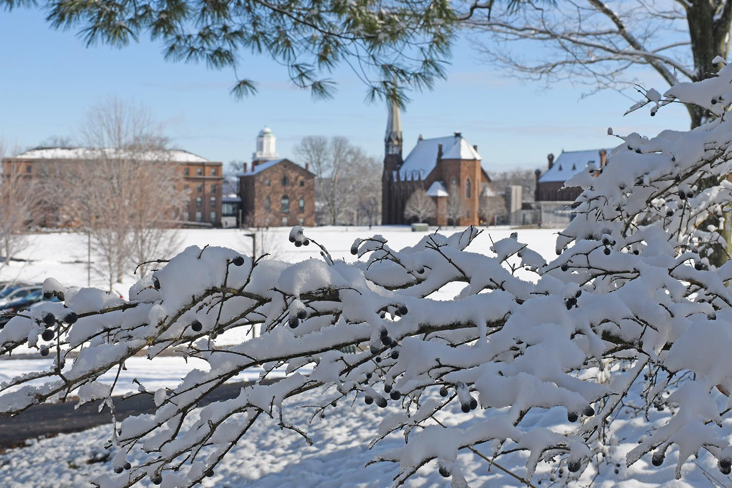 Snow lightly blanketed campus during the morning hours of Dec. 11. By noon, much of the snow had started to melt.