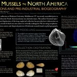 Tan '20 Honored by Geological Society of America for Poster Presentation