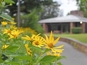 west co garden